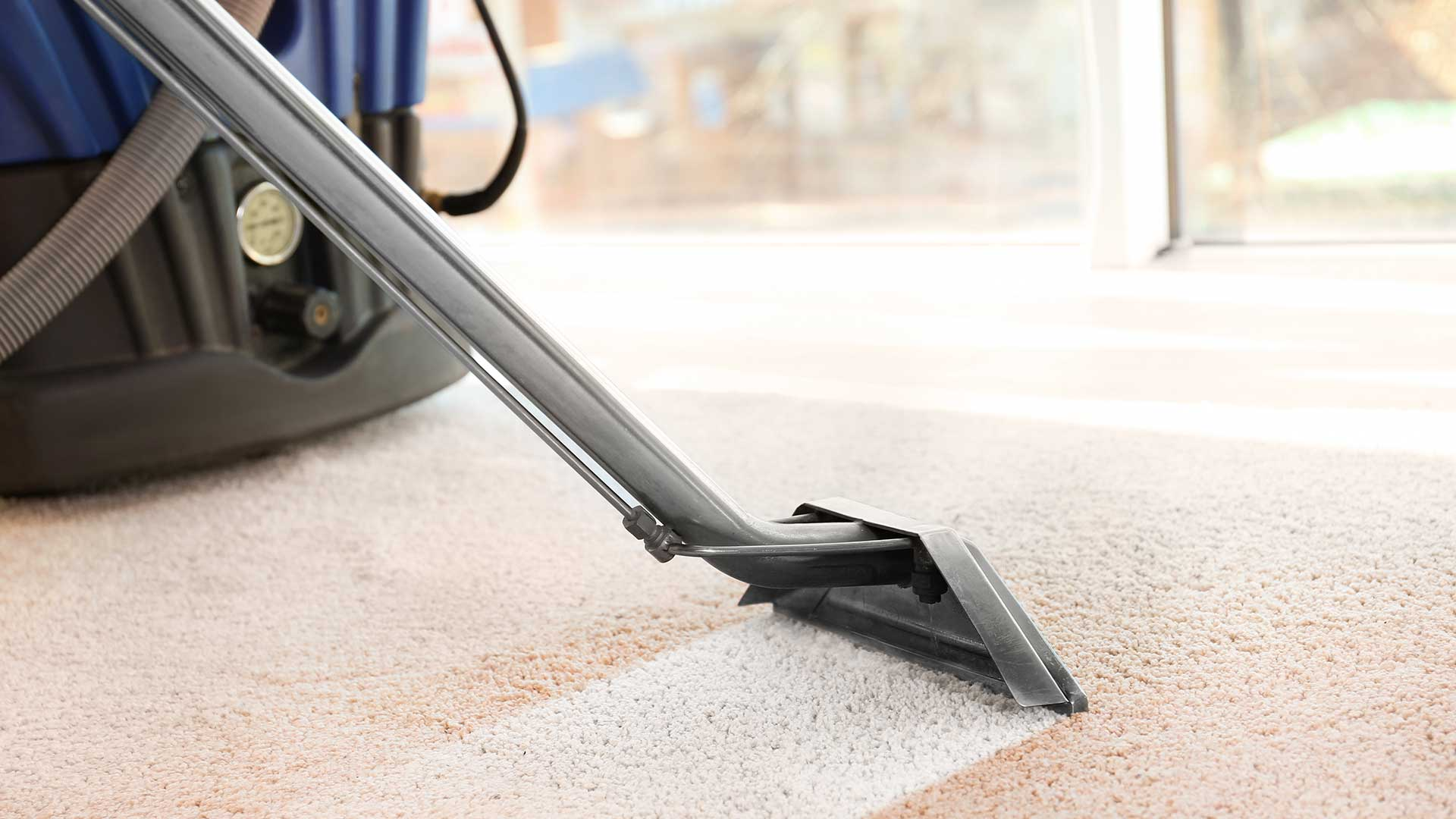 Carpet Cleaning Janitorial Services Lutz Wesley Chapel